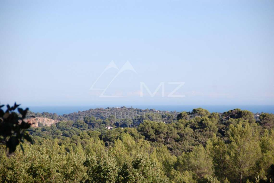 Cannes backcountry - Superbe property in calm environment with pool - photo3
