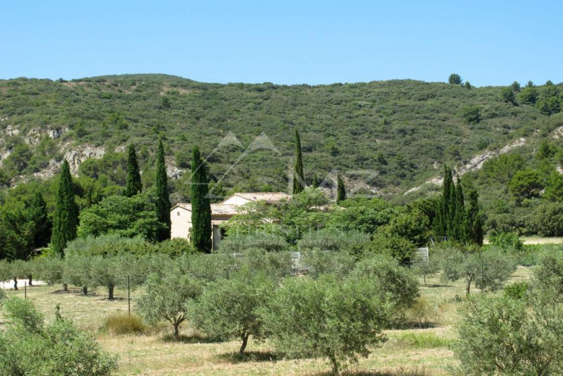Close to Lourmarin - Renovated villa - photo4