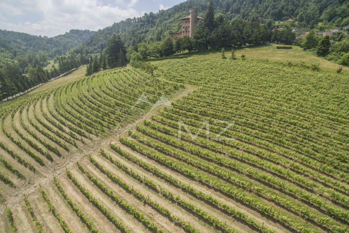 Italy - Alessandria - CASTLE FOR SALE IN PIEDMONT WITH WINE CELLAR,  VINEYARDS BARBERA AND GRIGNOLINO
