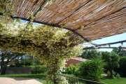 Close to Saint-Tropez - Charming Provencal villa - photo10