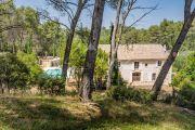 Close to Saint-Rémy de Provence - Mas with pool - photo1