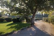 Close to Avignon - Lovely mas - photo8
