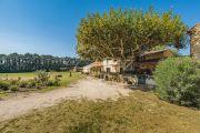 Proche Saint-Rémy de Provence - Mas provençal - photo8