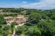 Les Parcs de Saint-Tropez - Villa with an extensive park - photo4
