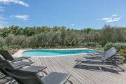 Недалеко от Канн - Для любителей оливковых рощ. - photo9