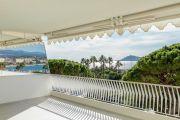 Cannes Croisette - Spacieux appartement rénové - photo4