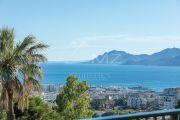 Cannes - Californie - Magnifique vue mer panoramique - photo9