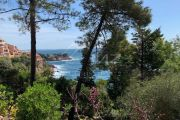 Close to Cannes - Apartment in private domain - photo5