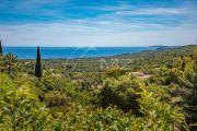 Sole Agent - La Croix-Valmer - Sea view provencal 5 bedroom home - photo2