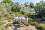 Saintes-Maries-de-la-Mer - Charming Camargue farmhouse - photo19