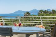 Cannes - Croisette - Spacious apartment - photo5