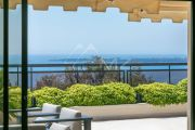 Cannes - Eden - Apartment-villa with panoramic sea view - photo1