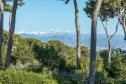 Cap d'Antibes - Californian villa with sea view - photo5