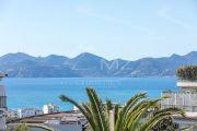 Cannes - Basse Californie - Bel appartement dans une résidence bourgeoise - photo2