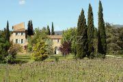 Proche Lourmarin - Domaine viticole - photo1