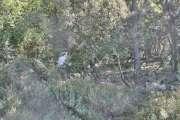 Proche Saint-Paul de Vence - Vue mer panoramique - photo2