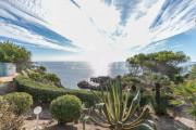Théoule sur Mer - Waterfront property - photo6