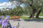 Недалеко от Канн - Для любителей оливковых рощ. - photo8
