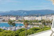 Cannes Croisette - Spacieux appartement rénové - photo3