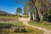 Недалеко от Горда - Имение с виноградником - photo6