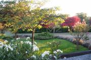 Proche Gordes - Charmante maison de vacances en pierres - photo5