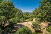 Grimaud - Beautiful renovated stone mas and guest annexe with waterfall - photo6