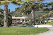 Cannes - Basse Californie - Rare - photo13