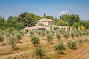 Proche Gordes - Magnifique Mas restauré au milieu des oliviers - photo2