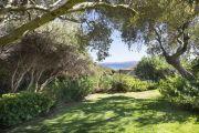 Italy - Porto Cervo - Villa with amazing sea view - photo4