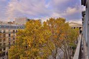 Etoile Rue Royale - photo3