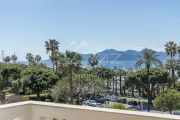 Cannes - Croisette - Port Canto - photo5