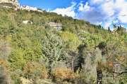 Vence - Provencal villa with sea view - photo6