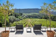 Charming property in the heart of the Cassis vineyards - photo8