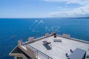 Nice - Cap de Nice - Unique propriété pieds dans l'eau - photo2