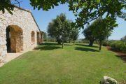 Arrière-pays cannois - Magnifique villa - photo22
