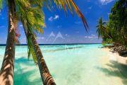 Мальдивы - Elite мальдивский вилла в Мале - photo7