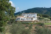 Close to Cannes - Tanneron - Exceptional family property - photo7