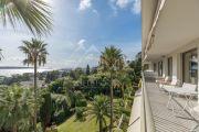 Cannes - Californie - Rare in the area - photo2