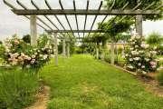 Люберон - Прекрасная вилла для отдыха в окружении великолепного парка - photo7