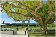 Saint-Rémy de Provence - Exceptional property - photo5