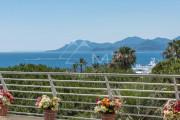 Cannes - Croisette - Spacious apartment - photo3