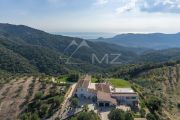 Close to Cannes - Tanneron - Exceptional family property - photo2