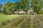 Proche Saint-Rémy de Provence - Mas en campagne - photo2