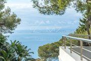 Saint-Jean-Cap-Ferrat - Panoramic sea view - photo2