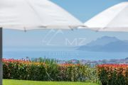 Cannes - Californie - Magnifique Villa - photo14
