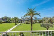 Cannes - Croisette - Sunny terrace - photo7