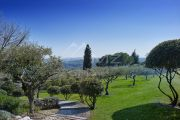 Close to Saint-Paul de Vence - Provencal Domain - photo6